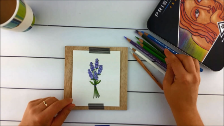 Lavender-Step10