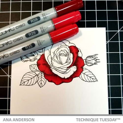 TT-AnaA-May-blog-post-Sending-Roses2