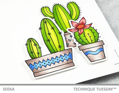 Seeka---A-Little-Prickly-2