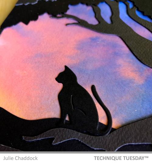 Sunrise-Cats4