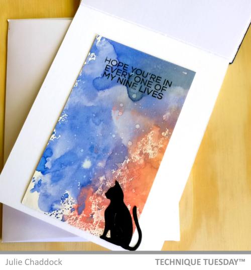 Sunrise-Cats3