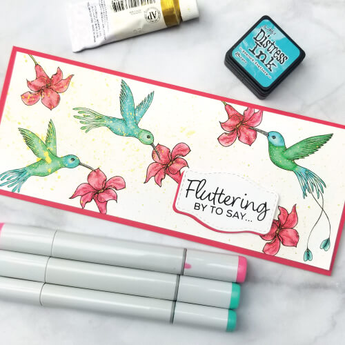 Hummingbird-BL6
