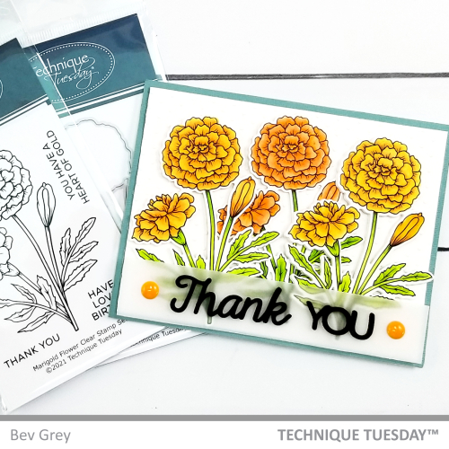 This diy marigold bouquet thank you card features the words Thank you in distinctive black lettering across the bottom. The images on the card include three stamped, colored, and die cut marigolds in front of a white background framed by light blue. The image also shows the marigold stamps and dies in the background behind the homemade thank you card.